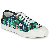 Shoes Women Low top trainers Faguo AVOCADO Green / Black / White