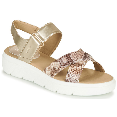 Shoes Women Low top trainers Geox D TAMAS Gold / Taupe