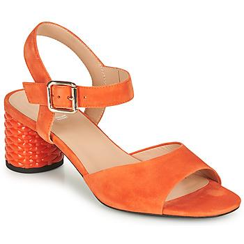 Shoes Women Sandals Geox D ORTENSIA MID SANDA Orange