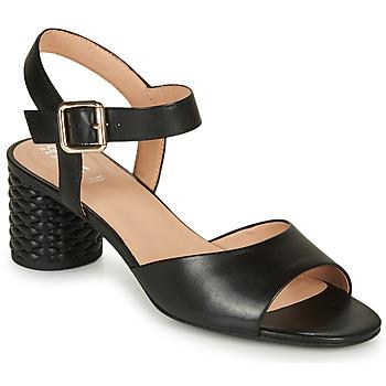 Shoes Women Sandals Geox D ORTENSIA MID SANDA Black