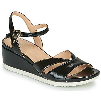 Shoes Women Sandals Geox D ISCHIA Black