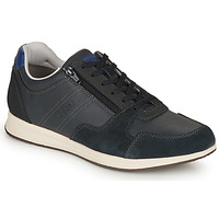 Shoes Men Low top trainers Geox U AVERY Marine