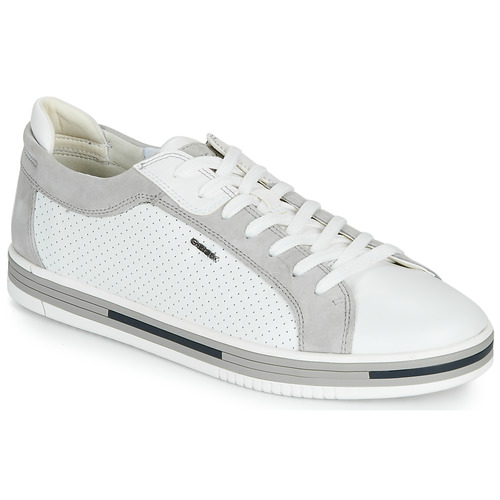 Shoes Men Low top trainers Geox U EOLO White / Grey