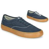 Shoes Men Low top trainers Element PASSIPH Blue