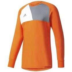 Clothing Men sweaters adidas Originals Assita 17 GK Junior Orange