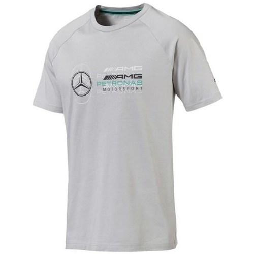 Clothing Men Short-sleeved t-shirts Puma Amg Grey
