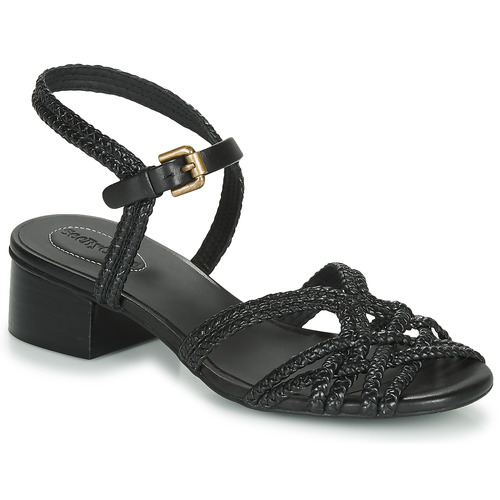 Shoes Women Sandals See by Chloé SB34161A Black