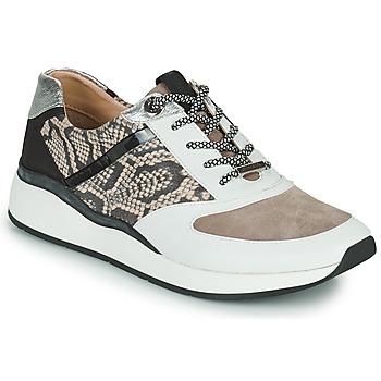 Shoes Women Low top trainers JB Martin 1KALIO White / Beige / Black