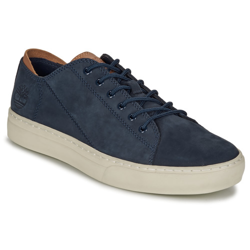 Shoes Men Low top trainers Timberland ADV 2.0 CUPSOLE MODERN OX Blue
