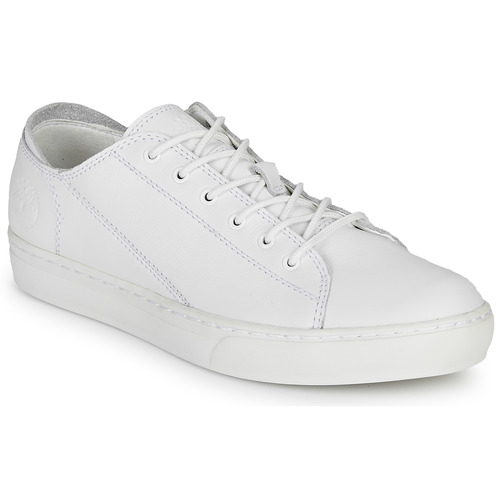 Shoes Men Low top trainers Timberland ADV 2.0 CUPSOLE MODERN OX White