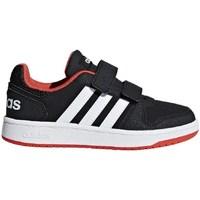 Shoes Children Low top trainers adidas Originals Hoops White,Black,Orange