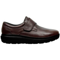 Shoes Men Derby Shoes & Brogues Joya EDWARD M BROWN
