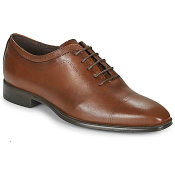 Shoes Men Brogues Carlington MINEA Cognac