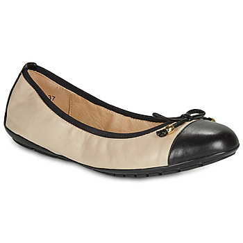 Shoes Women Flat shoes Caprice BUCLETTE Black / Beige