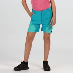 Clothing Children Shorts / Bermudas Regatta Sorcer Mountain Walking Shorts Blue Blue