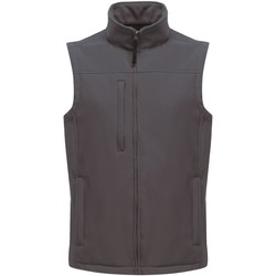 Clothing Men Jackets / Cardigans Professional FLUX Soft-Shell Bodywarmer Grey
