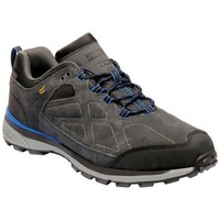 Shoes Men Low top trainers Regatta SAMARIS Suede Low Walking Boots Briar Oxford Blue Grey Grey