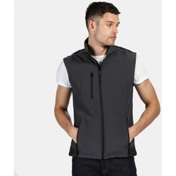 Clothing Men Jackets / Cardigans Professional SANDSTORM Softshell Bodywarmer Seal Grey Black Grey Grey