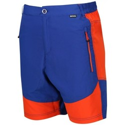 Clothing Men Shorts / Bermudas Regatta Sungari Lightweight Active Shorts Blue Blue