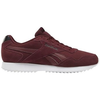Shoes Men Low top trainers Reebok Sport Royal Glide Burgundy,White