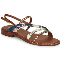 Shoes Women Sandals Ash PLAYA Brown