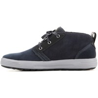 Shoes Men Hi top trainers Skechers Portermalego Navy Black