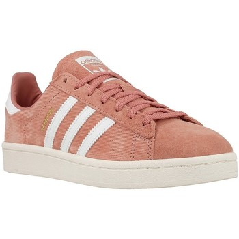 Shoes Women Low top trainers adidas Originals Campus W Brown