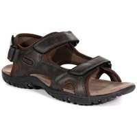 Shoes Men Outdoor sandals Regatta Haris Sandals Brown Brown