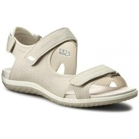 Shoes Women Sandals Geox D Sandal Vega Grey