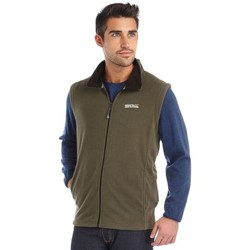 Clothing Men Coats Regatta Tobias II Lightweight Fleece Gilet Green Green