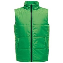 Clothing Coats Professional Access Insulated Bodywarmer Green Green
