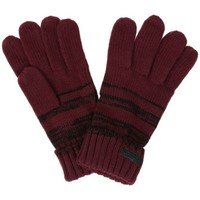 Clothes accessories Men Gloves Regatta Davion Knitted Gloves Burgundy Red Red