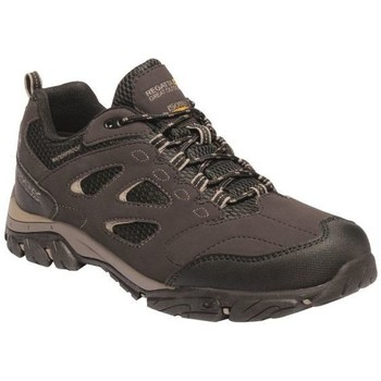 Shoes Men Multisport shoes Regatta HOLCOMBE IEP Low Walking Boots Navy Granite Brown Brown