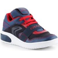 Shoes Children Derby Shoes & Brogues Geox J Xled BB Blue