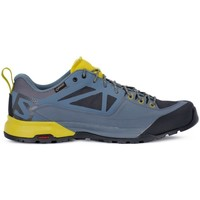 Shoes Men Running shoes Salomon X Alp Spry Gtx Blue,Yellow