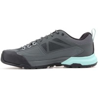 Shoes Women Derby Shoes & Brogues Salomon X Alp Spry Gtx Grey