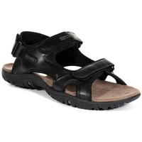 Shoes Men Outdoor sandals Regatta HARIS Sandals Walnut Tree Top Black Black