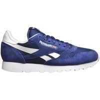 Shoes Men Low top trainers Reebok Sport Class Nylon Whtlt Grey CL Leather IS White,Blue