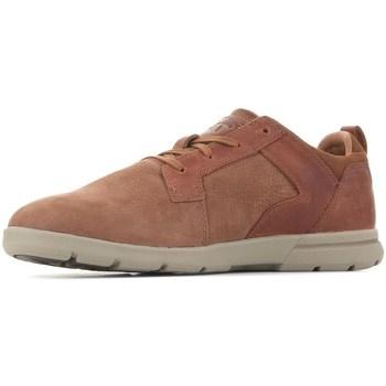 Shoes Men Low top trainers Caterpillar Ebb Brown