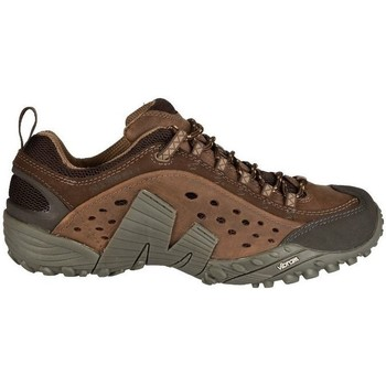 Shoes Men Low top trainers Merrell Intercept