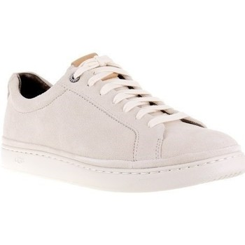 Shoes Men Low top trainers UGG Cali Beige