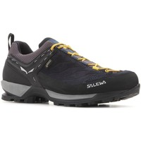 Shoes Men Walking shoes Salewa MS Mtn Trainer Gtx