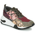 Shoes Women Low top trainers Steve Madden
