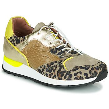 Shoes Women Low top trainers Mjus CAST Kaki / Leopard