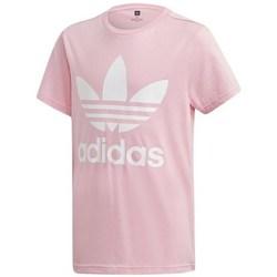 Clothing Children short-sleeved t-shirts adidas Originals Trefoil Tee