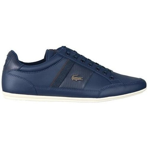 Shoes Men Low top trainers Lacoste Chaymon Navy blue