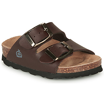 Shoes Boy Mules Citrouille et Compagnie MISTIL Brown