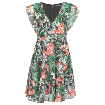 Clothing Women Short Dresses Guess EULALIA DRESS Black / Green