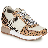 Shoes Women Low top trainers Gioseppo BIKANER Beige / Brown