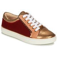 Shoes Women Low top trainers André LA FUNAMBULE Bronze